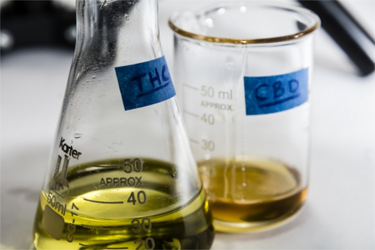 full spectrum vs broad spectrum vs cbd isolate: the difference explained Full Spectrum vs Broad Spectrum vs CBD Isolate: The Difference Explained cbd full spectrum